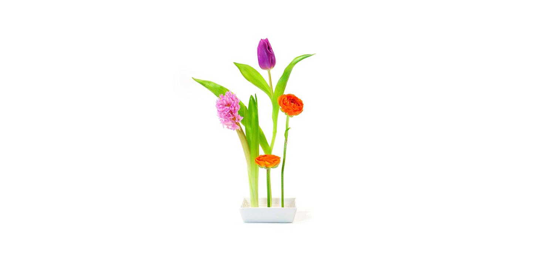 XXD Vase Florida